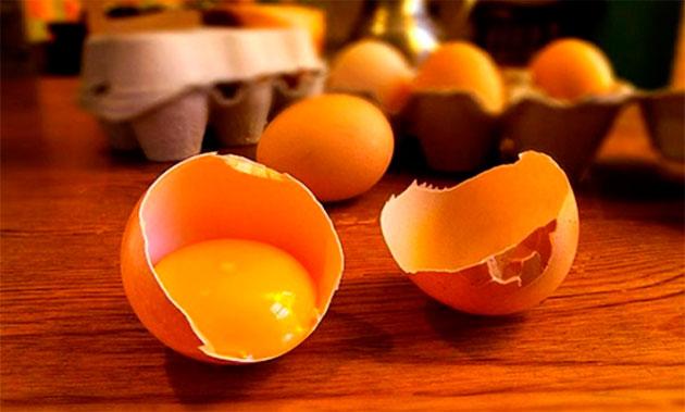 яичный желток в скорлупе